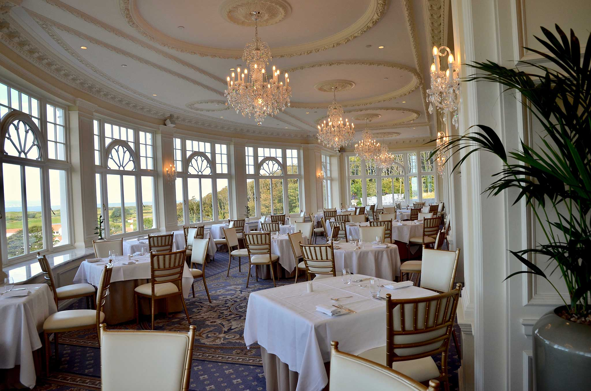 Dog Friendly Wedding Venues - Trump Turnberry
